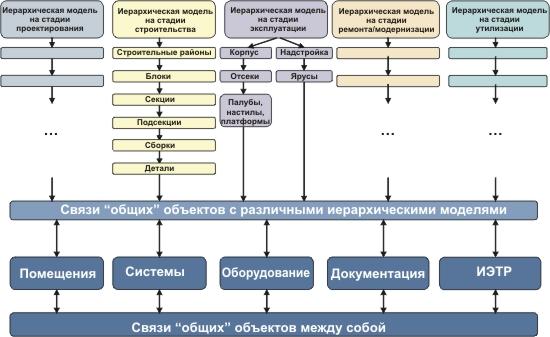 стадиях жизненного цикла